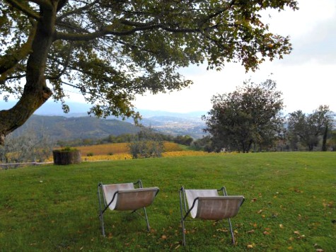 Relaxing at Podere di Pomaio, Tuscany