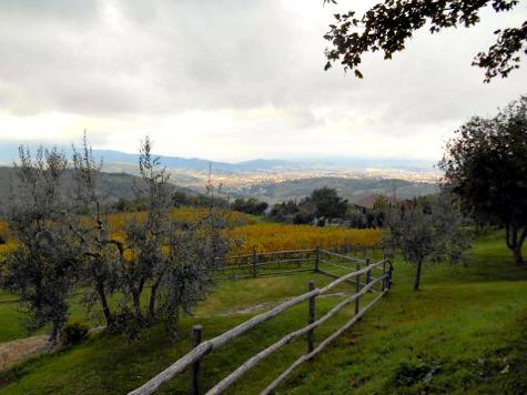 Podere di Pomaio, Arezzo, Tuscany