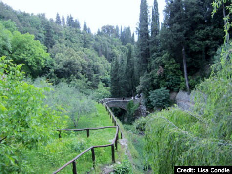 Cortona, Italy: Le Celle - Walking Paths