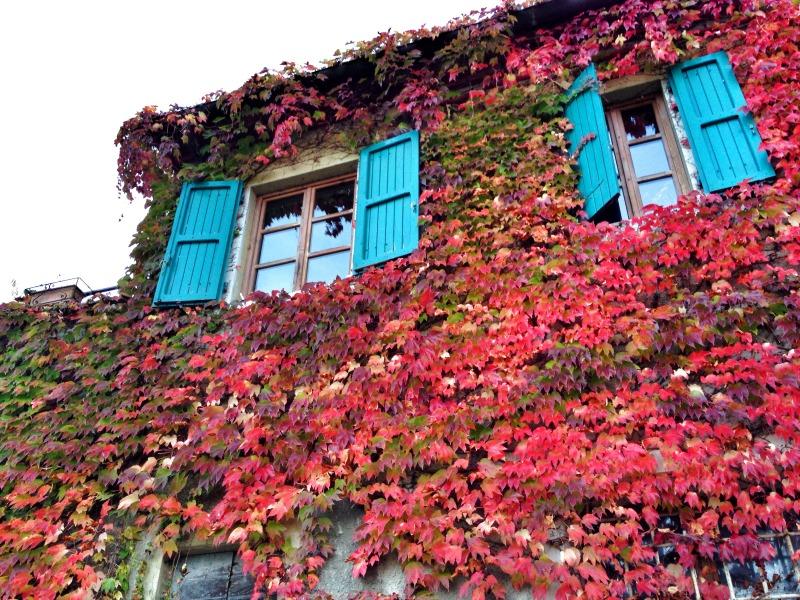 "Windowns in Mugello | Italy ""Show and Tell"": Mugello | BrowsingItaly.com"