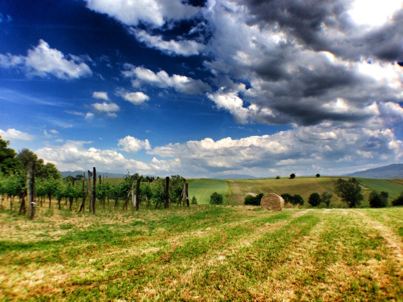 "Landscape in Mugello | Italy ""Show and Tell"": Mugello | BrowsingItaly.com"