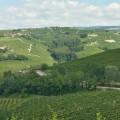 Langhe, Piedmont | 25 Favorite Photos of Italy on Instagram | BrowsingItaly.com