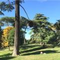 Villa Celimontana in Rome | Browsingitaly