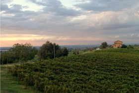 Castelvetro di Modena, the land of Lambrusco