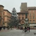Piazza del Nettuno, Bologna | BrowsingItaly.com