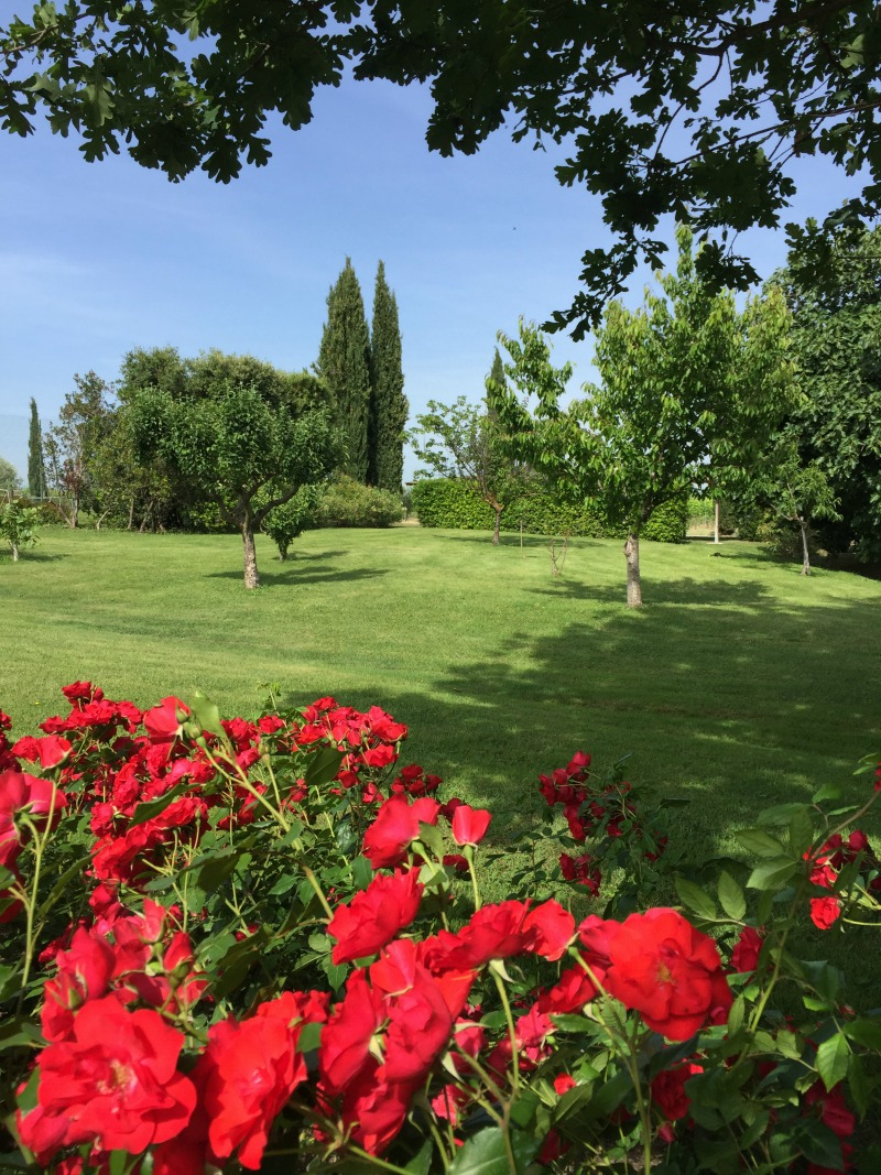 Garden of Villa Acquaviva in Maremma, Tuscany | BrowsingItaly.com