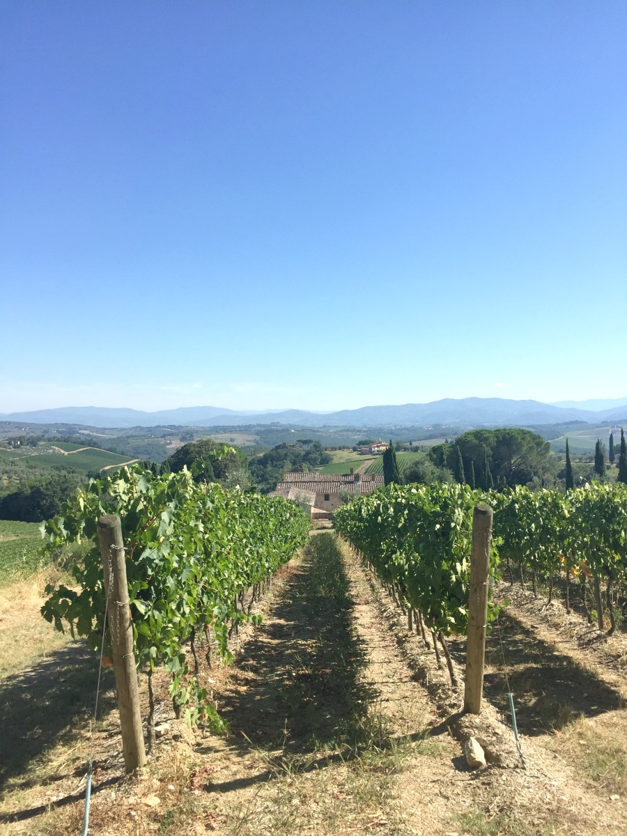 Stunning Tuscan view in Chianti | Slow Travel in Tuscany with Km Zero Tours | BrowsingItaly.com