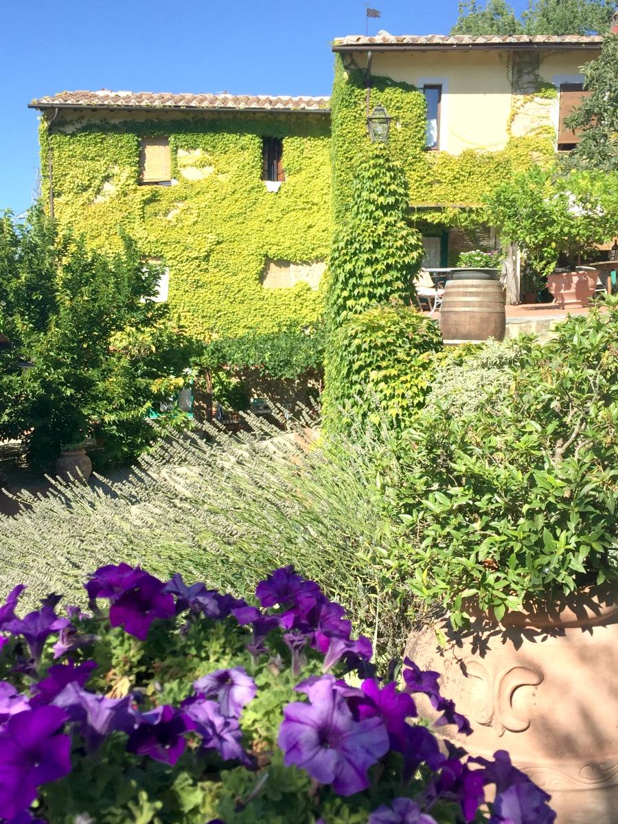 Il Bacio Farmhouse in Chianti, Tuscany | Slow Travel in Tuscany with Km Zero Tours |BrowsingItaly.com