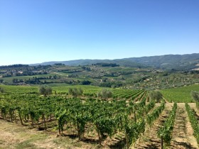 Essence of Slow Travel in Tuscany