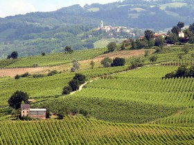 7 Irresistible Reasons to come & discover the Oltrepò Pavese wine region