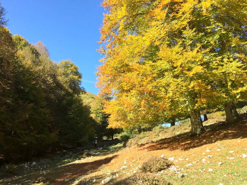 Gems in Latina: Fall in Monte Semprevisa | BrowsingItaly.com