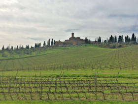 Wine, dine and completely unwind at Castello Banfi